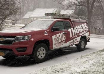 Albany pest control company Thomas Pest Services