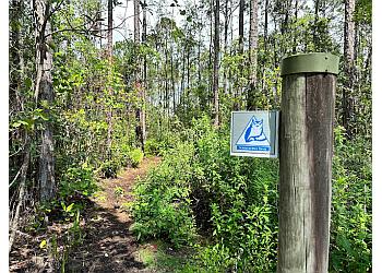 Orlando hiking trail Tibet-Butler Preserve
