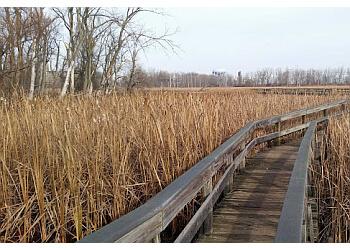 Buffalo hiking trail Tifft Nature Preserve