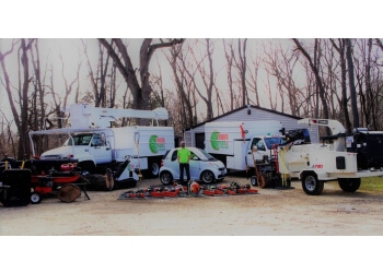 Rockford tree service Timber Tree Inc.