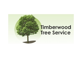 San Francisco tree service Timberwood Tree Services
