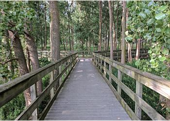 Buffalo hiking trail Times Beach Nature Preserve