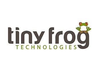 San Diego web designer Tiny Frog Technologies