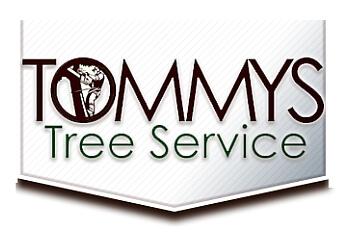 Austin tree service Tommy's Tree Service