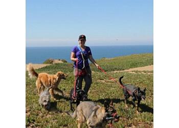 San Francisco dog walker Top Dog SF