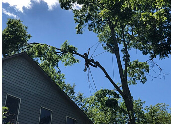 Huntsville tree service Top Notch Tree Service
