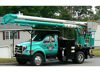 Worcester tree service Top Notch Tree Service