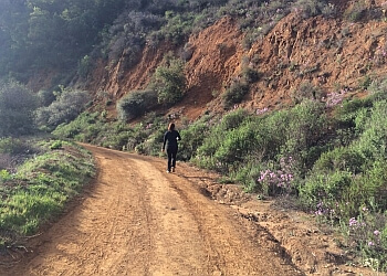 Inglewood hiking trail Topanga State Park Trail