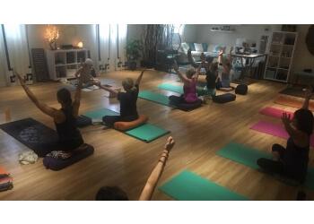 Cedar Rapids yoga studio Toula Yoga