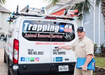 Dallas animal removal Trapping USA