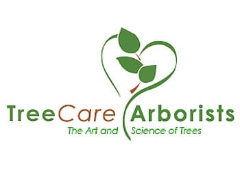 Garden Grove tree service Tree Care Arborists