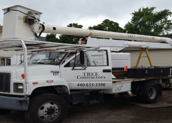 Cleveland tree service Tree Contractors Inc.