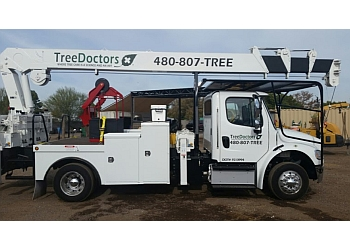 Gilbert tree service Tree Doctors, Inc