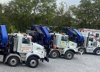 Lafayette tree service Tree Guardian