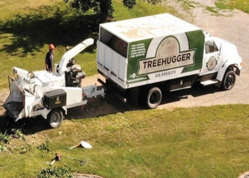 Des Moines tree service TreeHugger Complete Tree Care