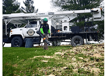 Des Moines tree service TreeHugger Complete Tree Care Service
