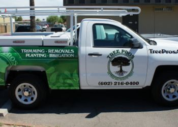 Phoenix tree service Tree Pros, LLC