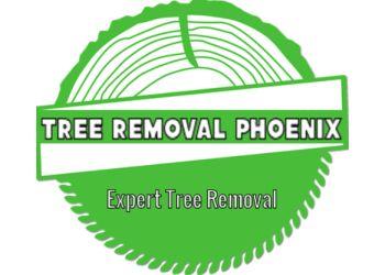 Scottsdale tree service Tree Removal Phoenix LLC