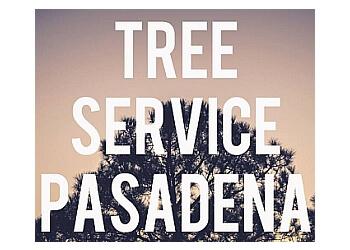 Pasadena tree service Tree Service Pasadena