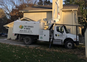 Omaha tree service Tree Services of Omaha