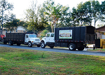 Orlando tree service Tree Work Now Inc