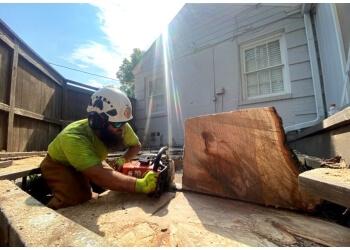 Arlington tree service Treehugger Tree Service