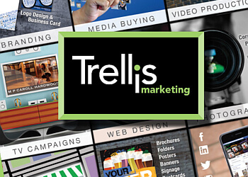 Buffalo advertising agency Trellis Marketing, Inc