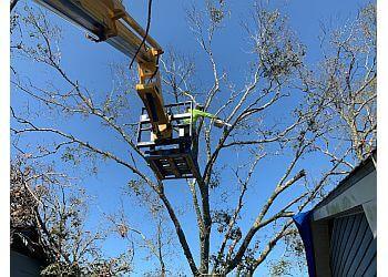 Jackson tree service Tri-County Tree Service