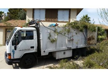 North Las Vegas tree service Troy's Tree Service