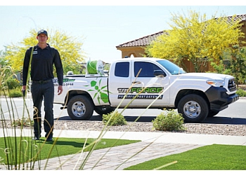 Chandler pest control company TruForce Pest Control