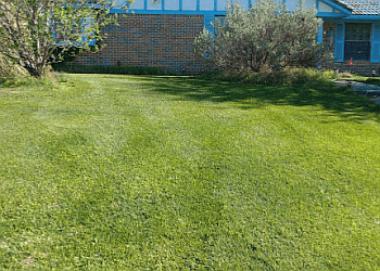 Grand Prairie lawn care service TruGreen