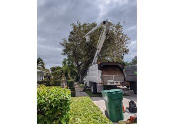 Miami tree service True Tree Service