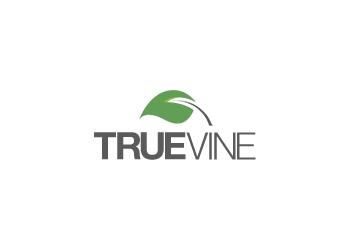 Rochester web designer Truevine Web Design