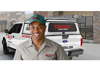San Antonio animal removal Trutech Wildlife Service