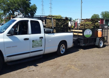 St Petersburg lawn care service Turner Lawn Care