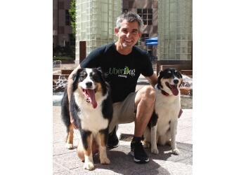 Charlotte dog training UberDog Training