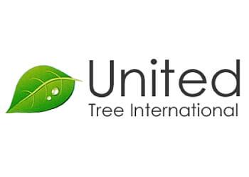 Pembroke Pines tree service United Tree International