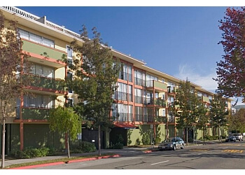 Berkeley apartments for rent University Park Apartments