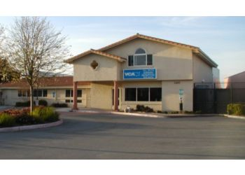 Salinas veterinary clinic VCA All Pets Animal Hospital