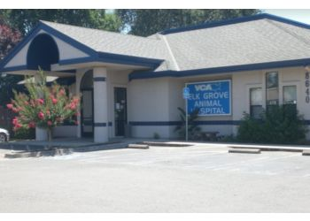 Elk Grove veterinary clinic VCA Elk Grove Animal Hospital