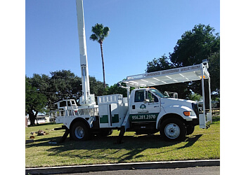 Brownsville tree service Valleywide Tree Trimming LLC