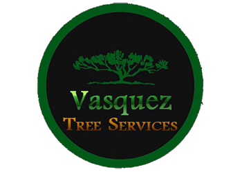 Little Rock tree service Vasquez Tree Services