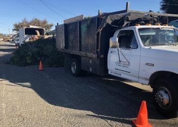 Oakland tree service Vega's Tree Services