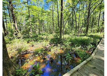 Mobile hiking trail Village Point Park Preserve