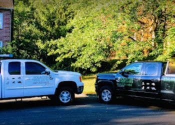 Knoxville animal removal Volunteer Wildlife Control