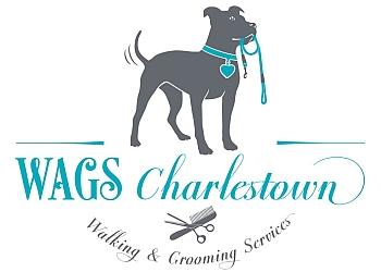 Boston dog walker WAGS Charlestown