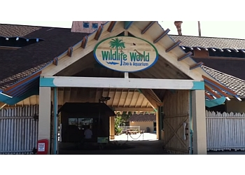 Surprise places to see WILDLIFE WORLD ZOO, AQUARIUM, & SAFARI PARK