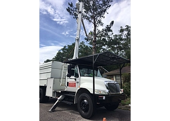 Savannah tree service WM Tree Service, LLC.