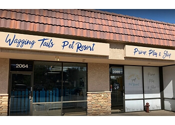 Tempe pet grooming Wagging Tails Pet Resort