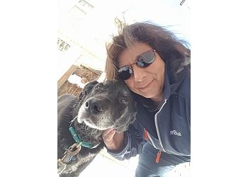 Buffalo dog walker Walk n Waggles